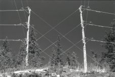 Power lines changing direction, OM-2n, Arista edu 400, L76 1:1