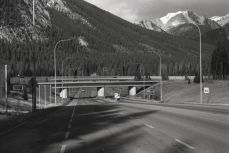 We often don't see or appreciate the effort that goes into making and maintaining roads, OM-2n, Fomapan 400, A76 1:1