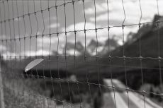 A fence overlooking highway 1, OM-2n Fomapan 400, A76 1:1